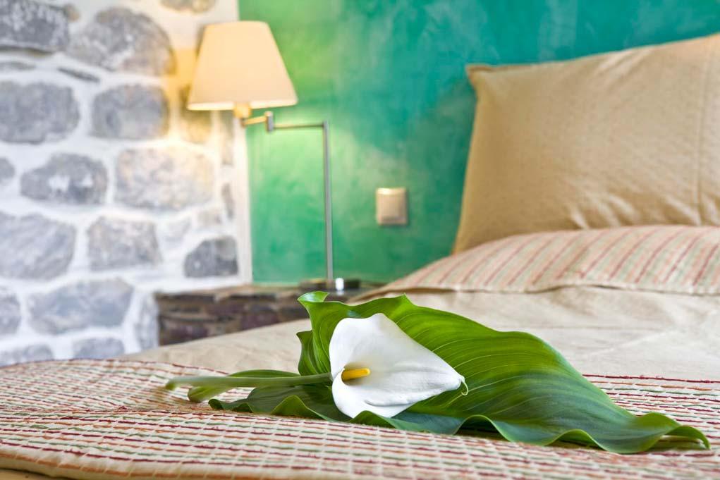 mani-elixrion-guesthouse7